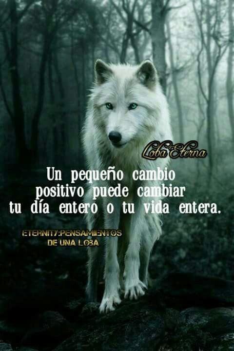 Frases De Una Loba Frases De Lobos Lobos Y Lobos Enamorados
