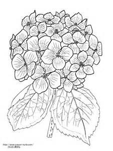 Pin By Angie Malenke On Coloring Pages Pinterest Coloring Pages
