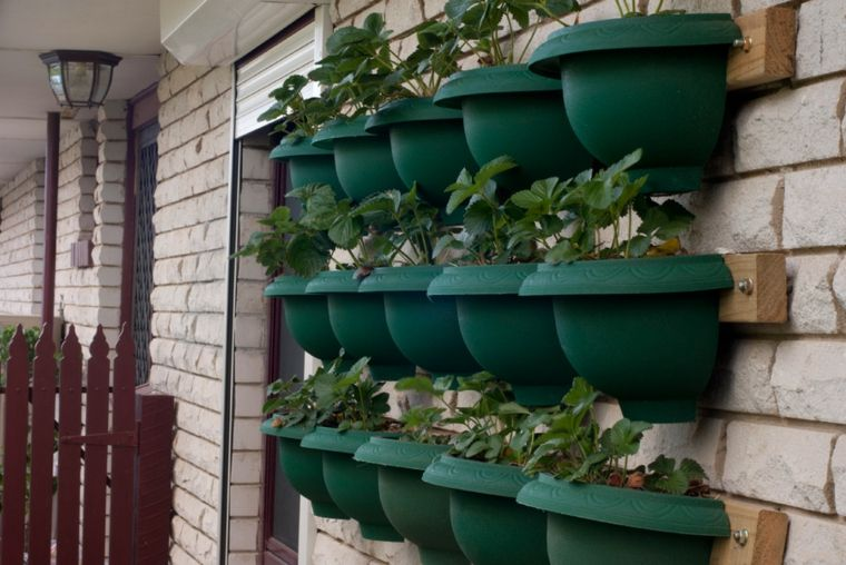 jardin vertical casero jardines verticales caseros aprende a dise arlos y mantenerlos originales ideas colocar estantes con macetas en la pared Plantas En Pared, Balcones Con  Plantas, Jardines