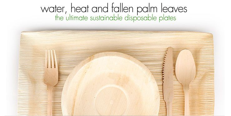 Palm Leaf Disposable Plates  sc 1 st  Pinterest & Palm Leaf Disposable Plates | Eco Weddings and Party Ideas ...