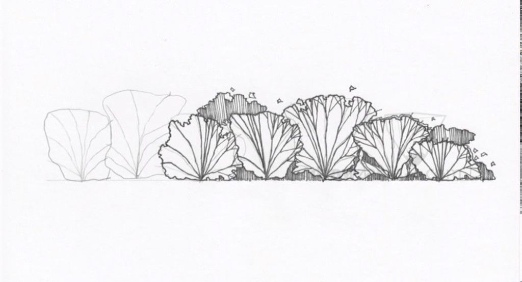 Landscape Architecture Construction Drawing Set Not Landscape