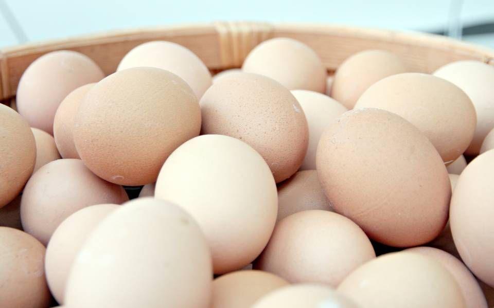 Säilytätkö kananmunat jääkaapissa vai huoneenlämmössä? – Maaseudun Tulevaisuus: molemmat tavat vääriä - Talouselämä