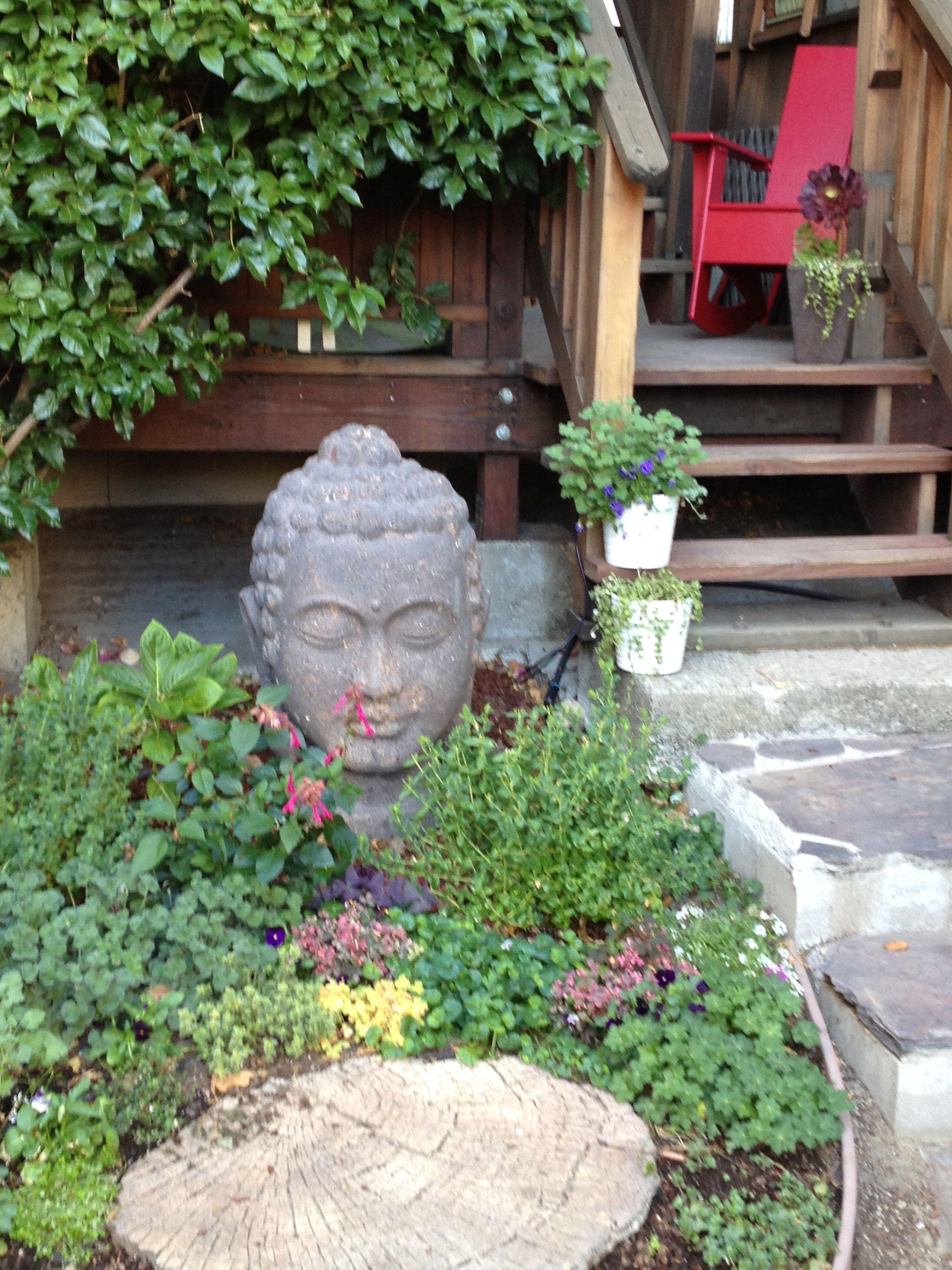 buddha head in the garden | Buddha garden, Buddha head ...