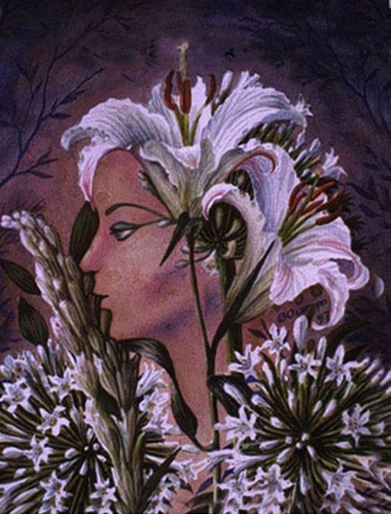 Illusion art by Octavio Ocampo | Pareidolias, Illusions ...