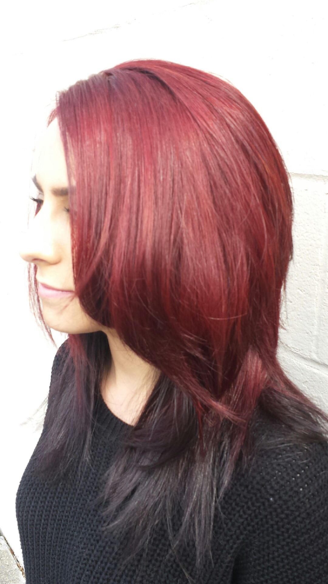 Red with hair black underlayer photo