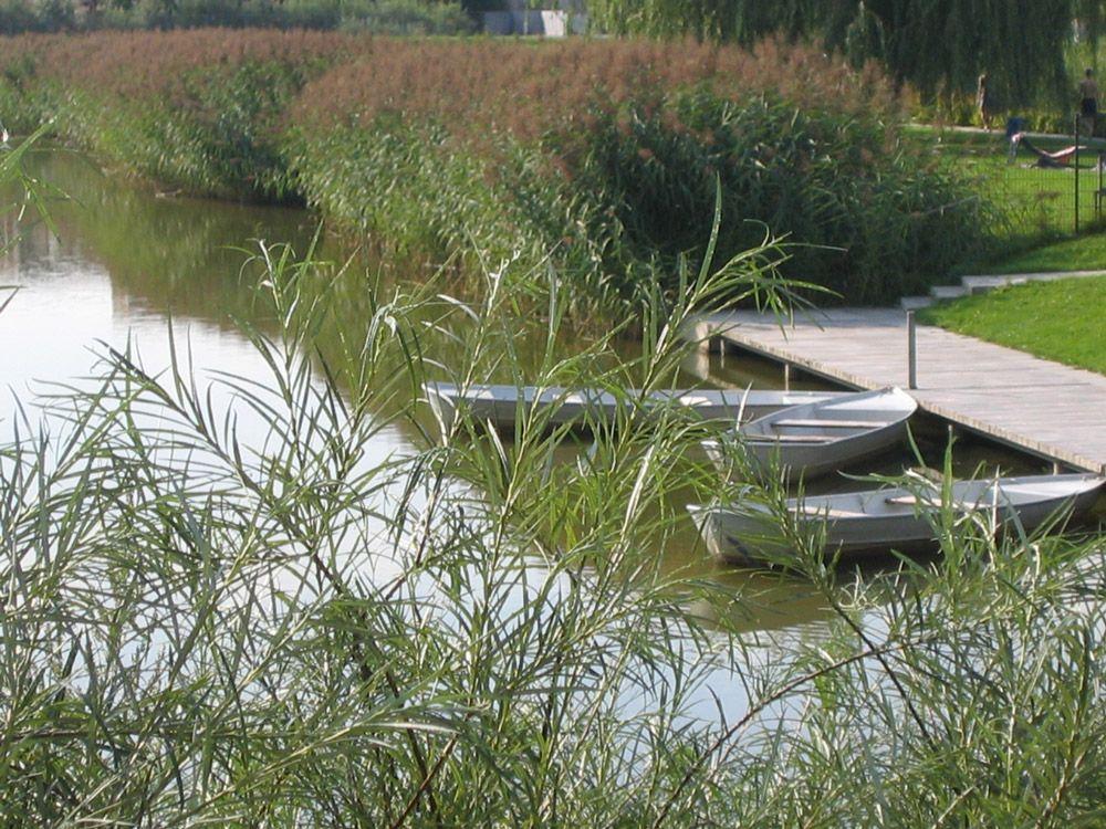 10-weidenger-landscaftsarchitekten-natural-swimming-pool « Landscape Architecture Works | Landezine