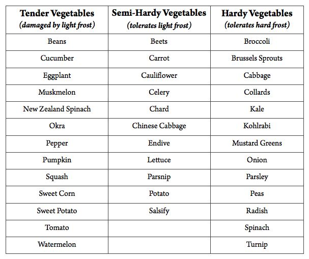 Garden Vegetable Hardiness Chart What Will Survive A 640 x 480