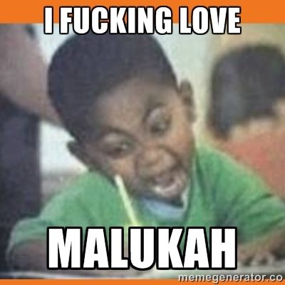 8692f1d8ccc10676feb1a14797c77b6d I Fucking Love Malukah Meme Generator Just
