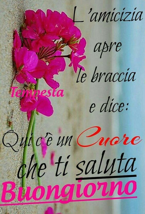 Amato Pin by Stefy Me on Buongiorno ☀ | Pinterest CZ32