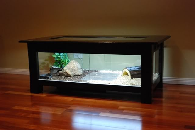 Show us your coffe table enclosures aussie pythons for Coffee table enclosure