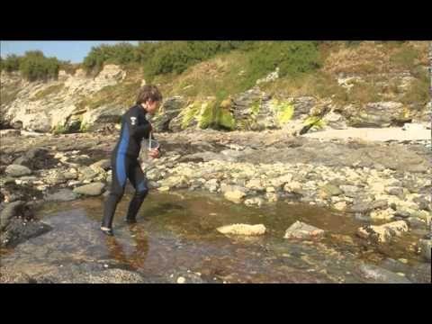 Stackhouse Secrets, Nature Workshops Beach sessions