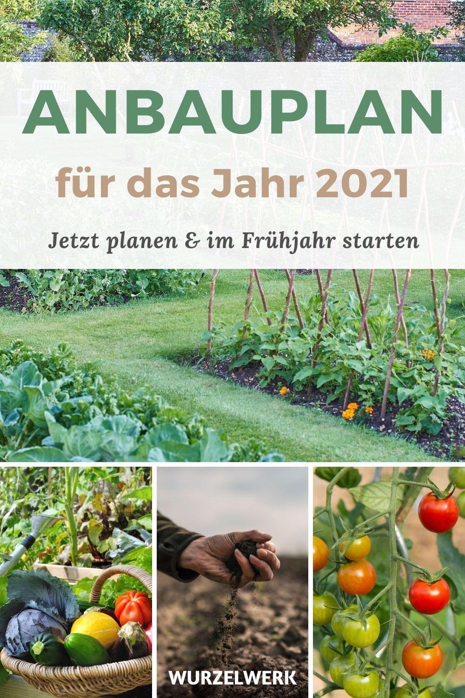 Fertiges Gemüse-Anbauplan-PDF (auch für Hochbeete) – Wurzelwerk