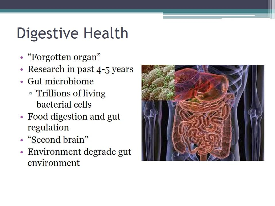 Brett Hall - How To Support Healthy Digestive Function As We Age