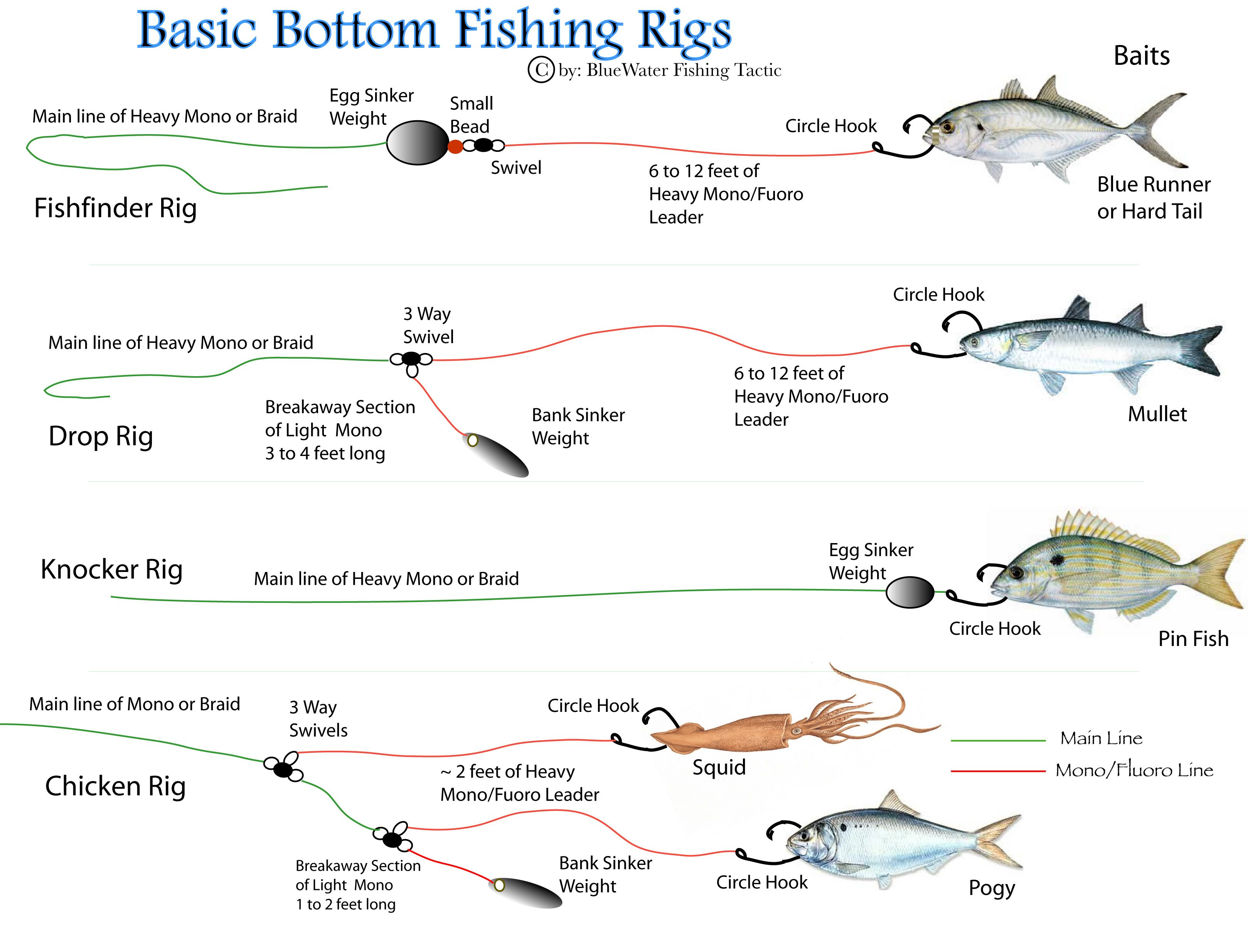 fishing rig diagrams first there are two basic kinds of bottom rigs rigs [ 3237 x 2470 Pixel ]