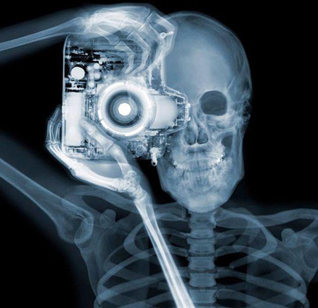 Observa la realidad a través de estas increíbles imágenes hechas con rayos X