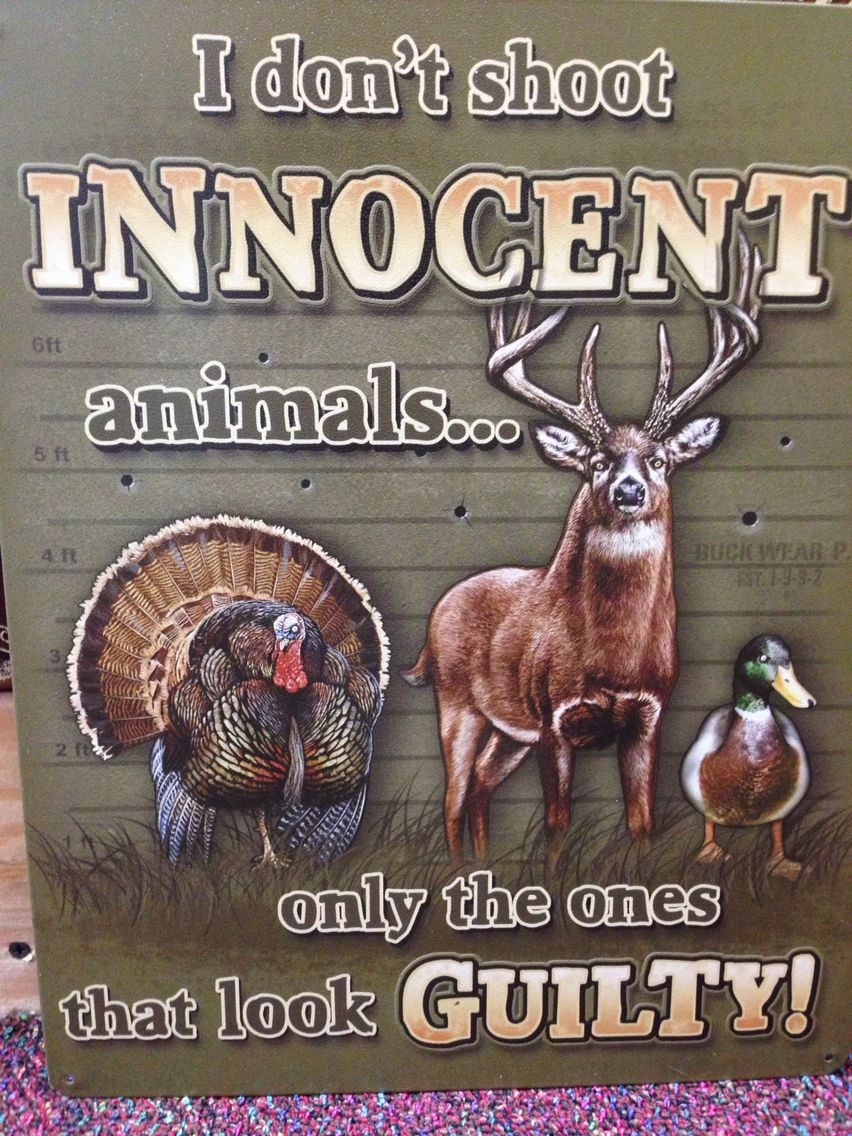 A Funny Sign Hunting Signs Wall Signs Decor Bow Hunting Quotes