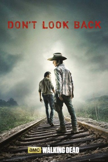 The Walking Dead Dont Look Back Plakat Plakaty Filmowe