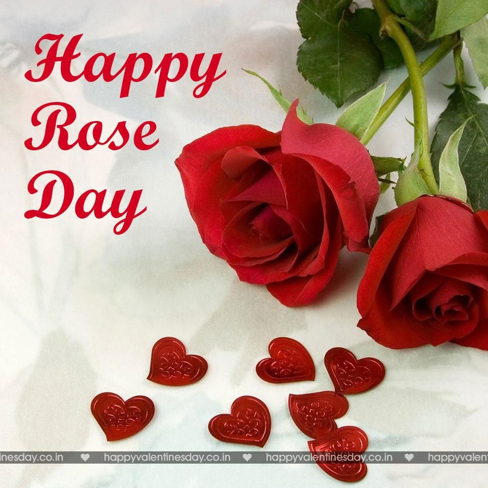 Rose Day Happy Valentine Day Greetings Happy Valentines Day Greetings Happy Valentines Day Messages Happy Valentines Day Gifts Happy Valentines Day Wa Beautiful Red Roses Flower Wallpaper Rose Wallpaper