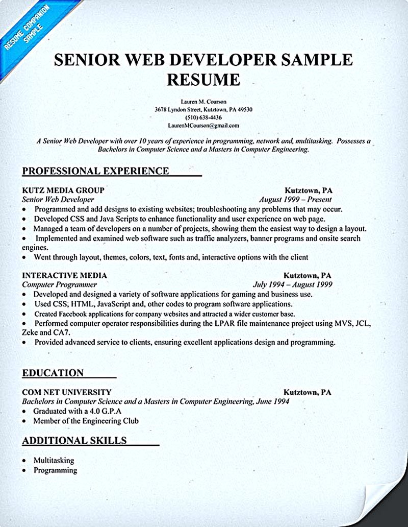 Scientific Programmer Sample Resume Web Developer Resume Objective Web Developer Resume Is Needed When .