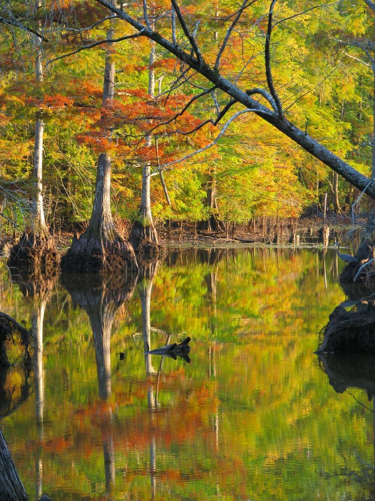 21 Most Beautiful Places To Visit In Mississippi Places To Visit