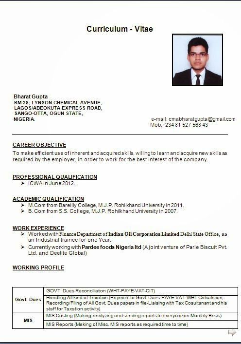 curriculum vitae international Sample Template Example ofExcellent
