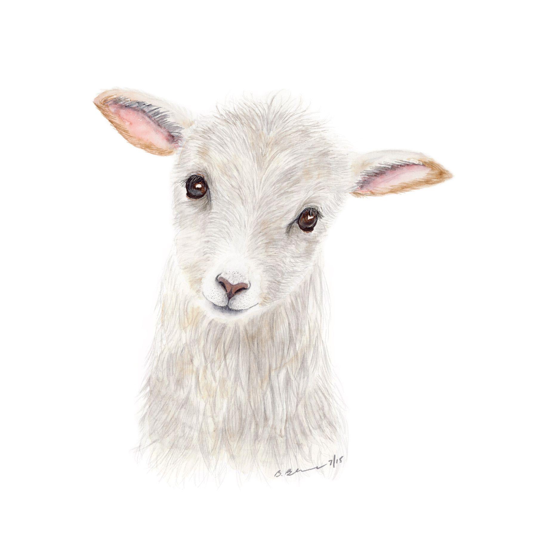 Baby Lamb Portrait Sheep nursery, Animal nursery, Baby