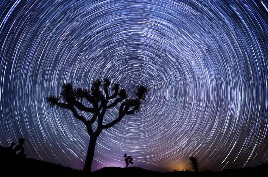Free Photo Give Away Contest!!     Giving away two signed prints of this photo.  Check out the details on the website :)     More Than a Moment in Time - Joshua Tree National Park