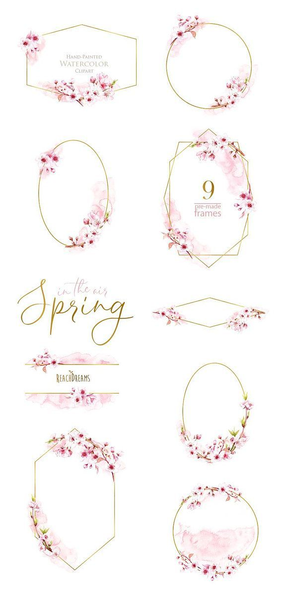 Watercolor Frames, Floral Sakura, Pre-made clipart, blossom spring ...