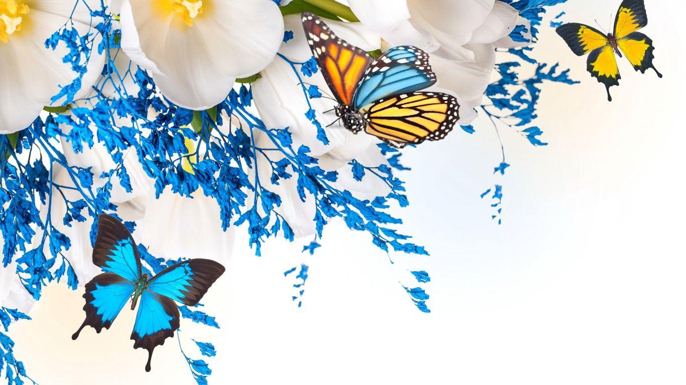Обои Коллаж, крылья, цветы. Разное foto 8