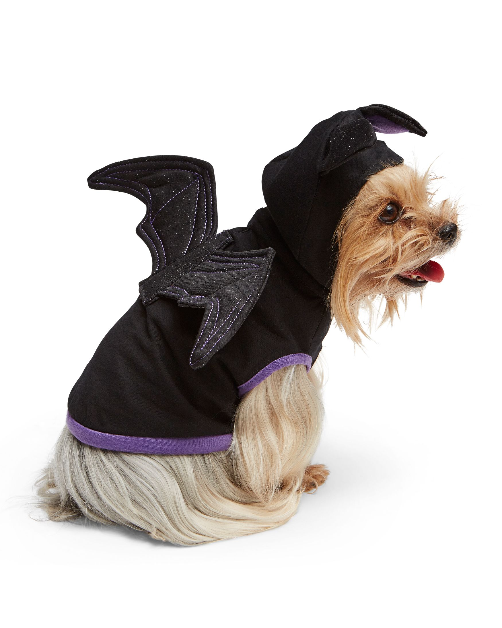 Matching Owner And Dog Costumes For A Pet Rifyingly Cute Halloween