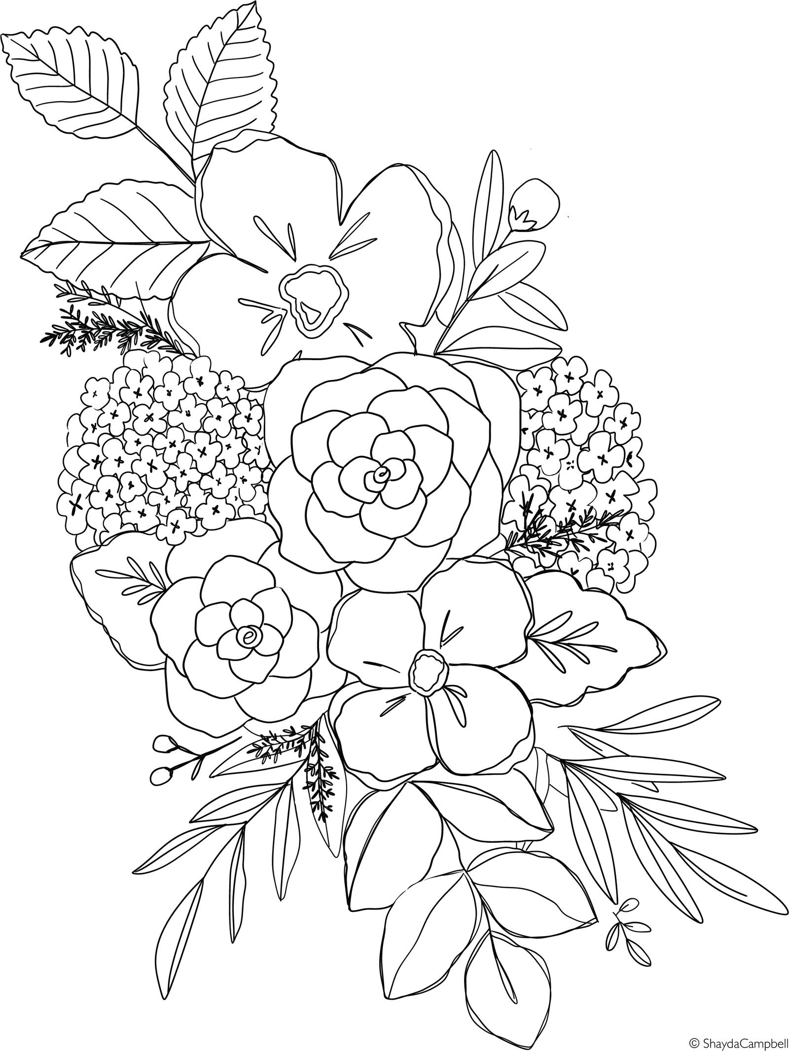 - Spring Hydrangea Coloring Page Flower Drawing Design, Watercolor