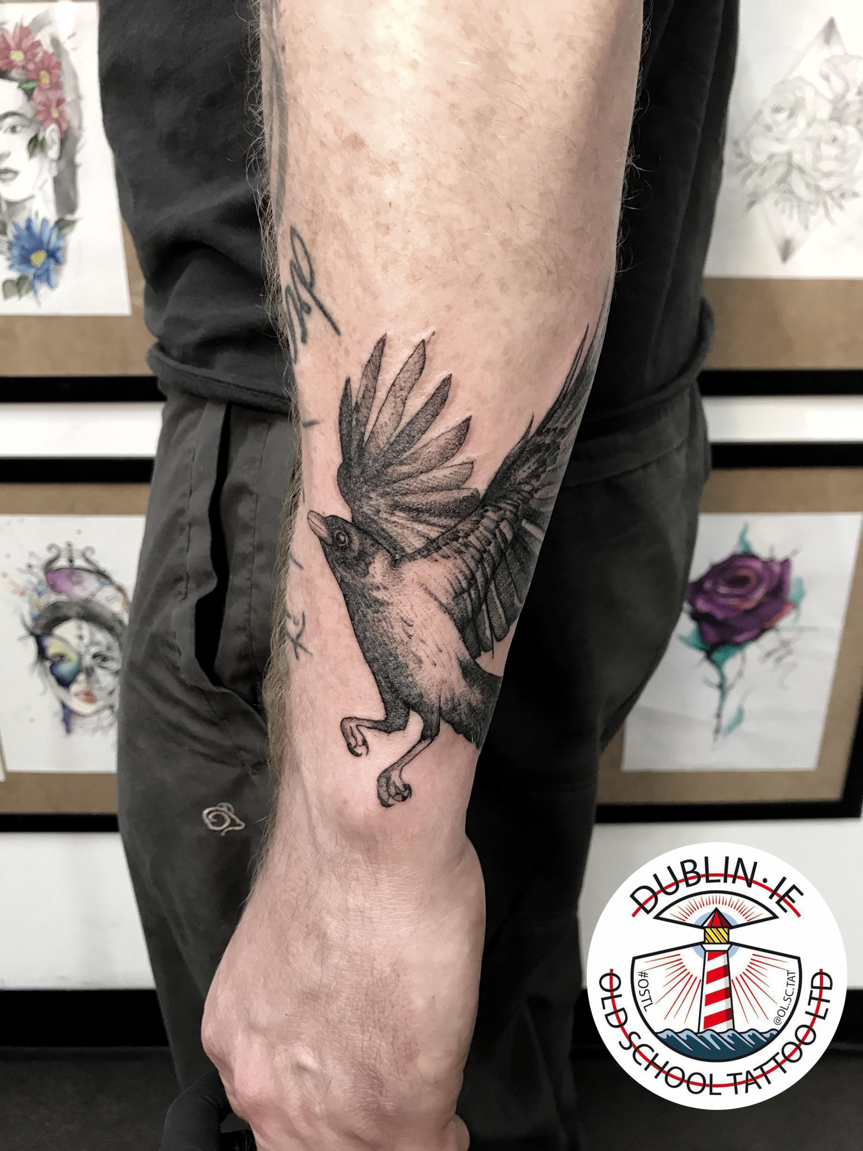 Bird in flight tattoo birdtattoo tattoo bird