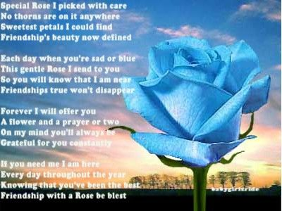 Blue Rose Meaning Her Love For His Inspired By Words He