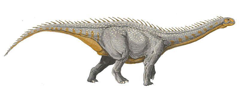 File:Barapasaurus DB.jpg