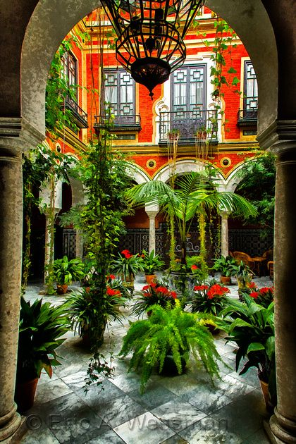 Europe Patio With Plants Patios Sevillanos Jardines Bonitos Patios Cordobeses