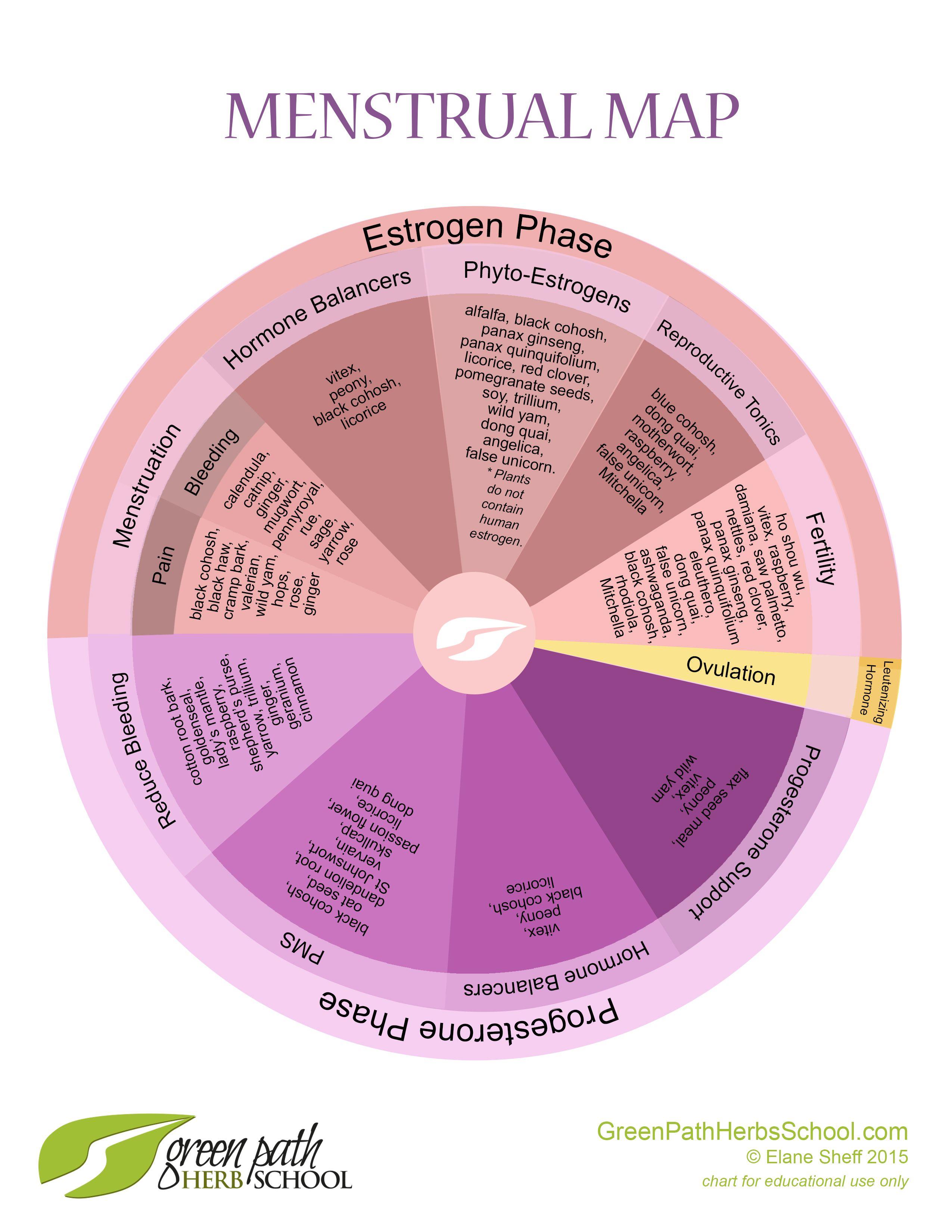 FREE: Menstrual Map | Menstrual cycle chart, Menstrual ... Menstrual Cycle Calendar Graph