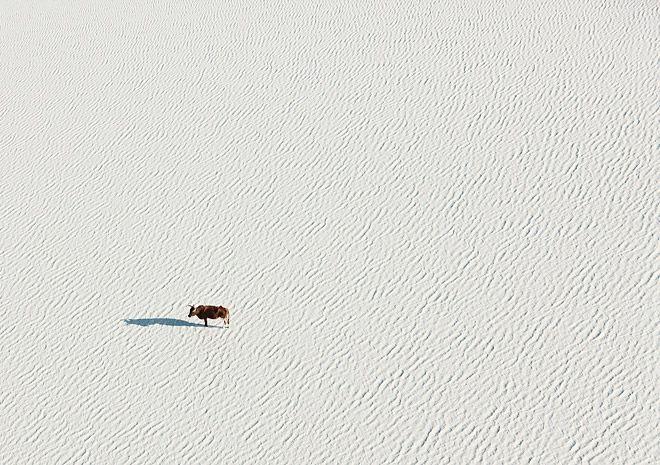 Aerial Botswana | Miss Moss