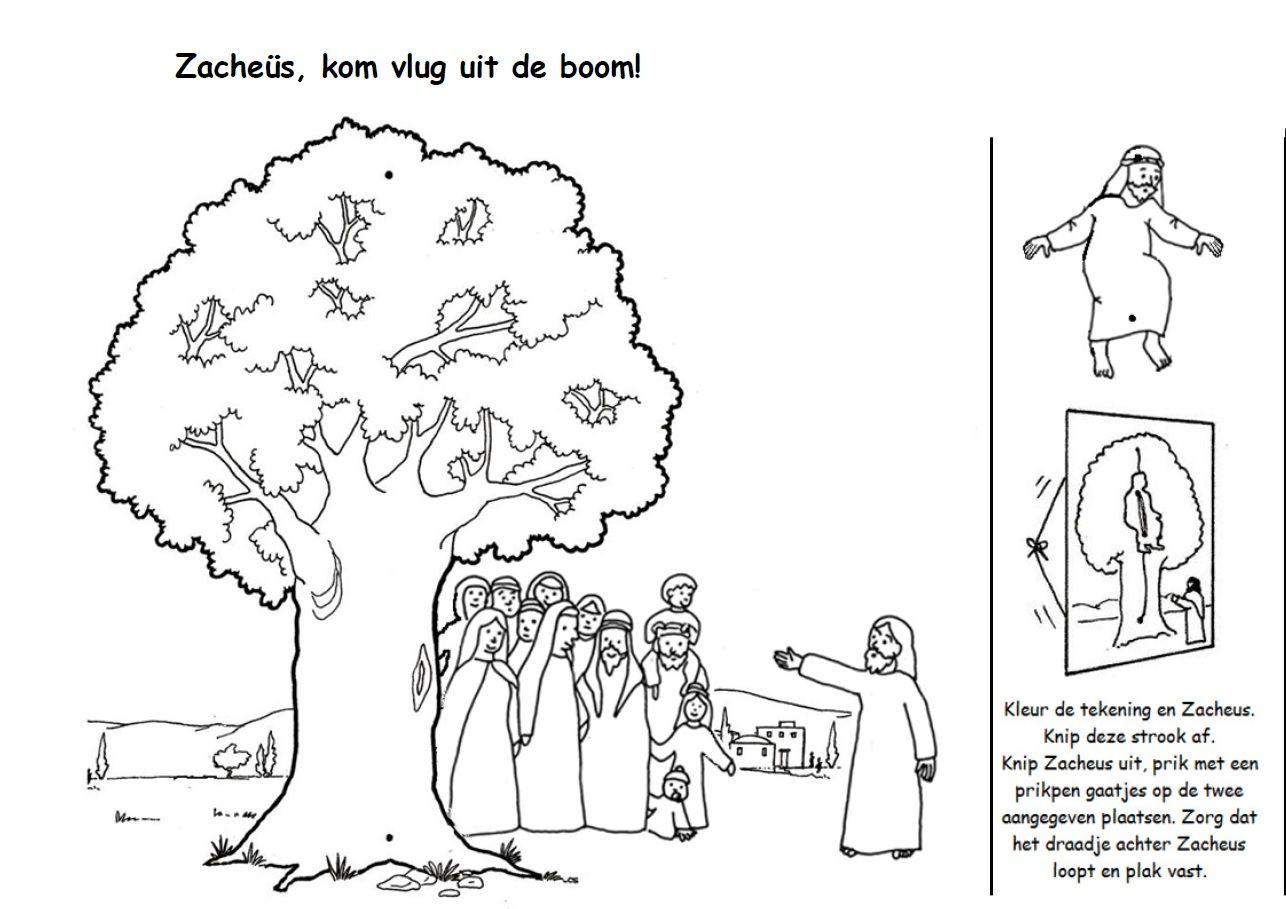 Zacheüs kom vlug uit de boom knutsel met touwtje Zacchaeus