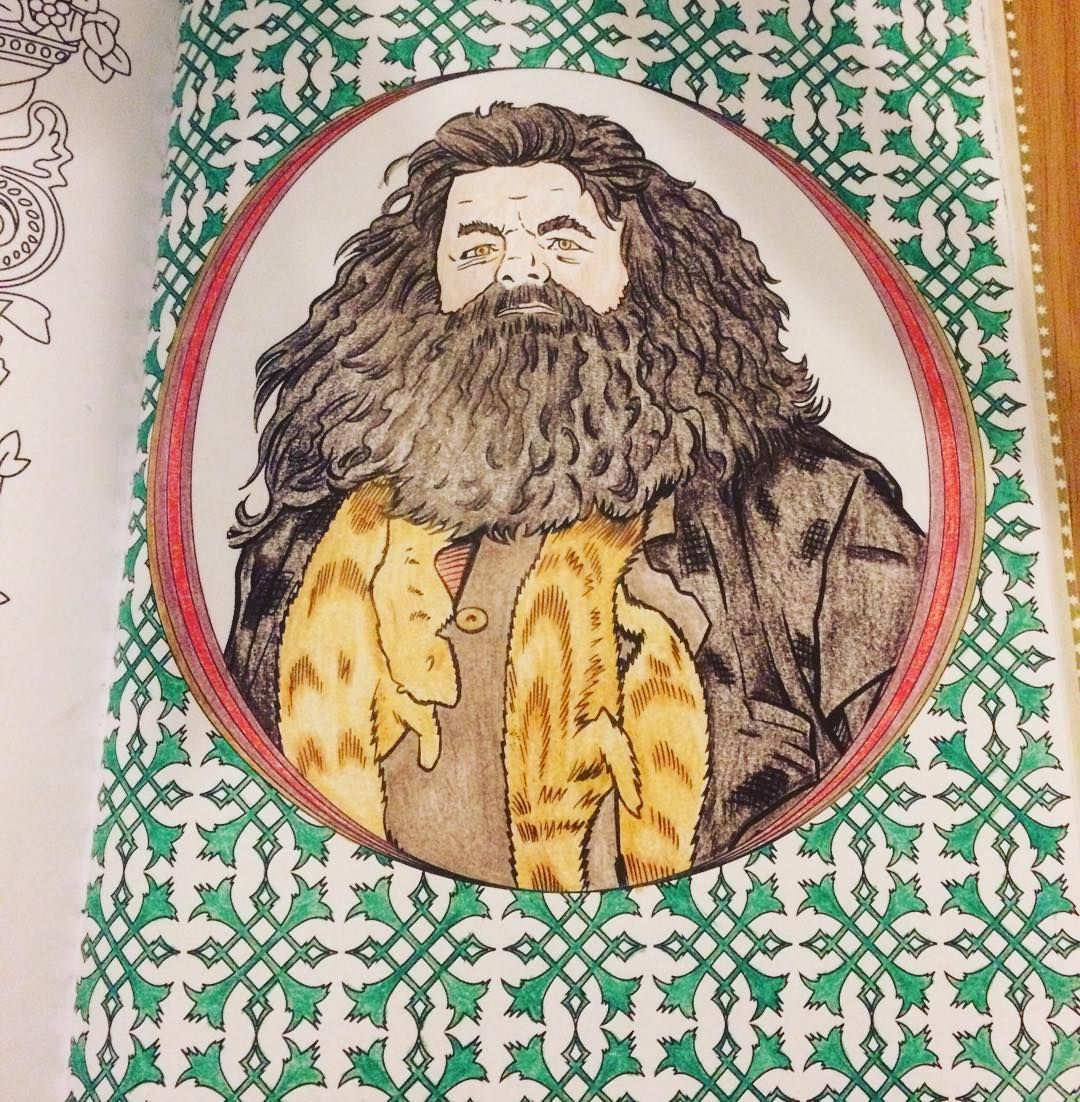 Harry Potter Coloring Book Rubeus Hagrid Colouring Books Pages Puppet Hogwarts Chance Vintage