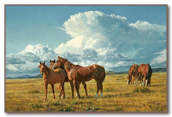 """Summer Breezes"" Fine Art Prints  by Tim Cox - Western Art #horses #art"