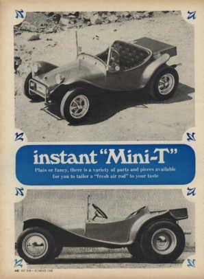 The Mini-T