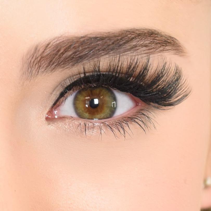 Dallas - Magnetic Eyeliner and Lash Bundle        Eyeliner magnétique et trousse de cils
