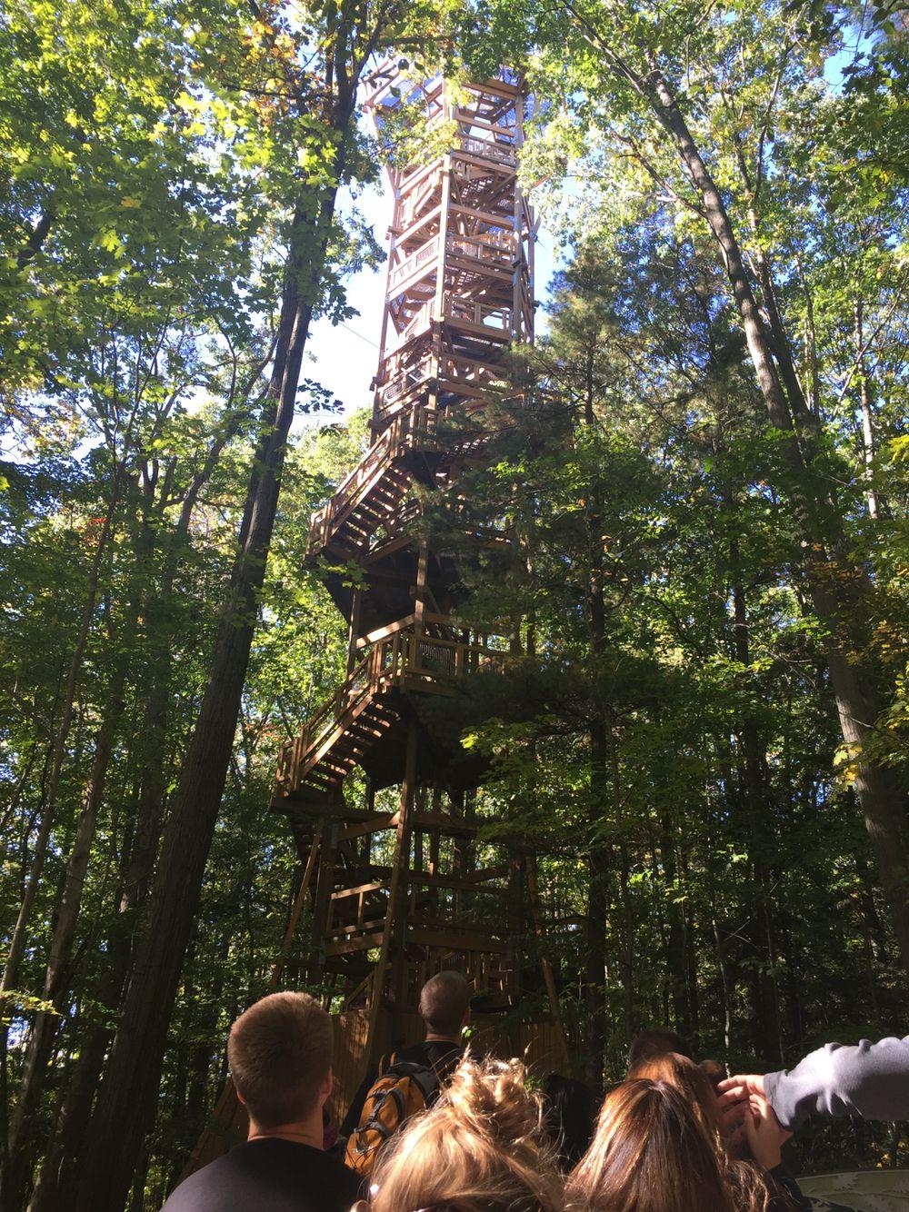 Tree tower - Holden Arboretum