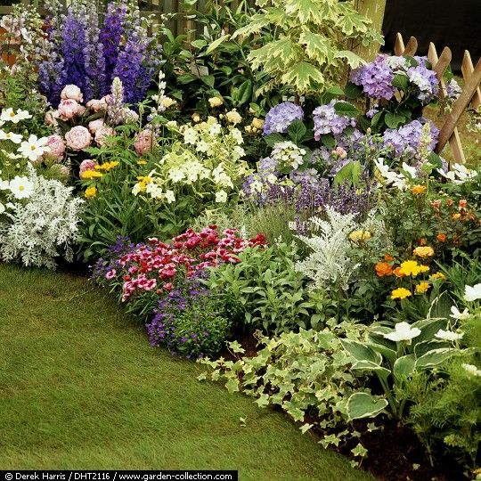 Small Flower Bed Ideas Pictures: Larkspur, Peony, Coreopsis, Silver