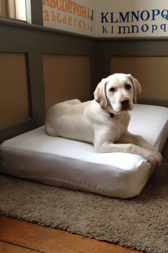 Dog Bed Best Crib Mattress Pet Repurposed Up Cycled