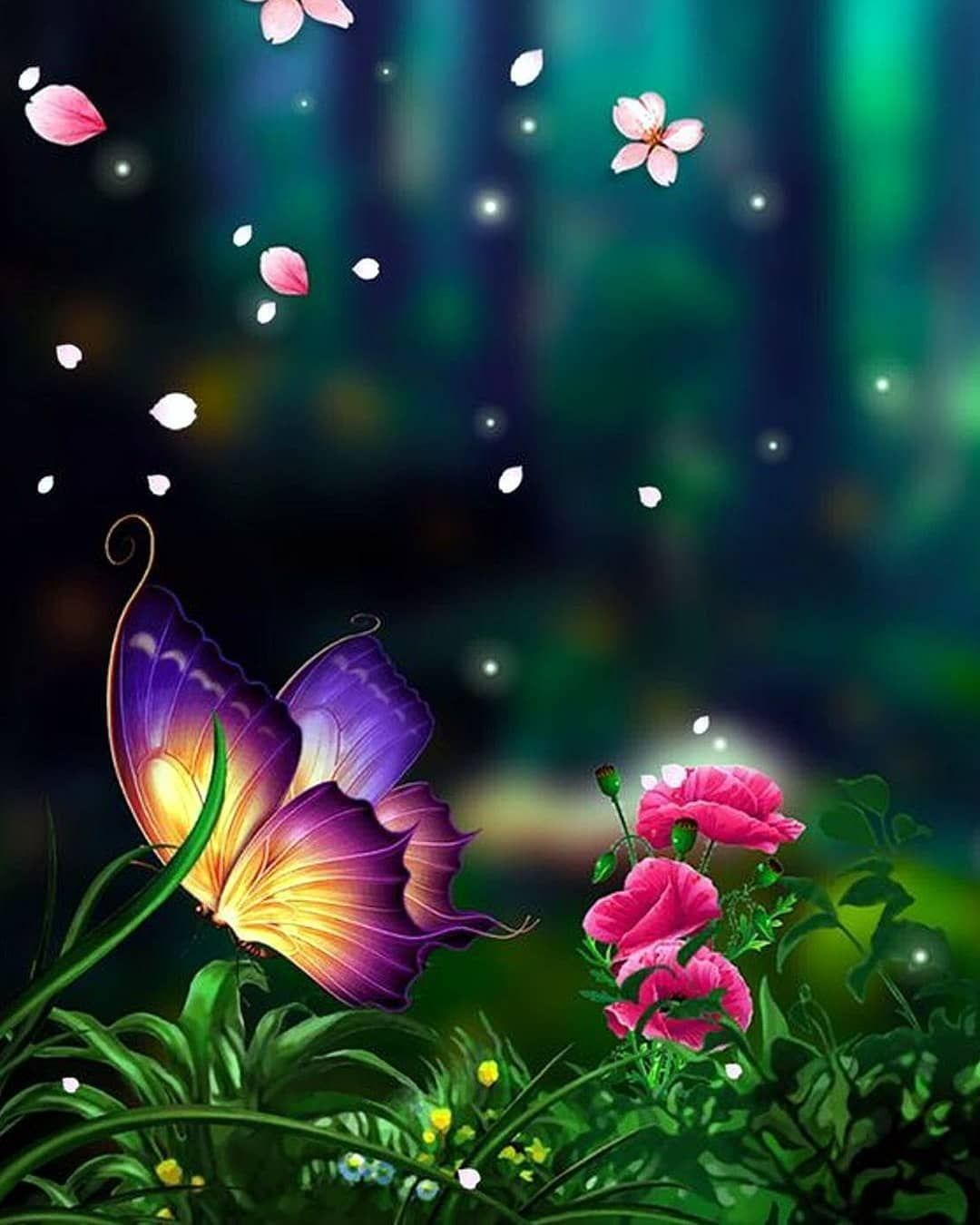 Nature Wallpaper For Jio Phone Butterfly Wallpaper Backgrounds Dreamcatcher Wallpaper Background Hd Wallpaper