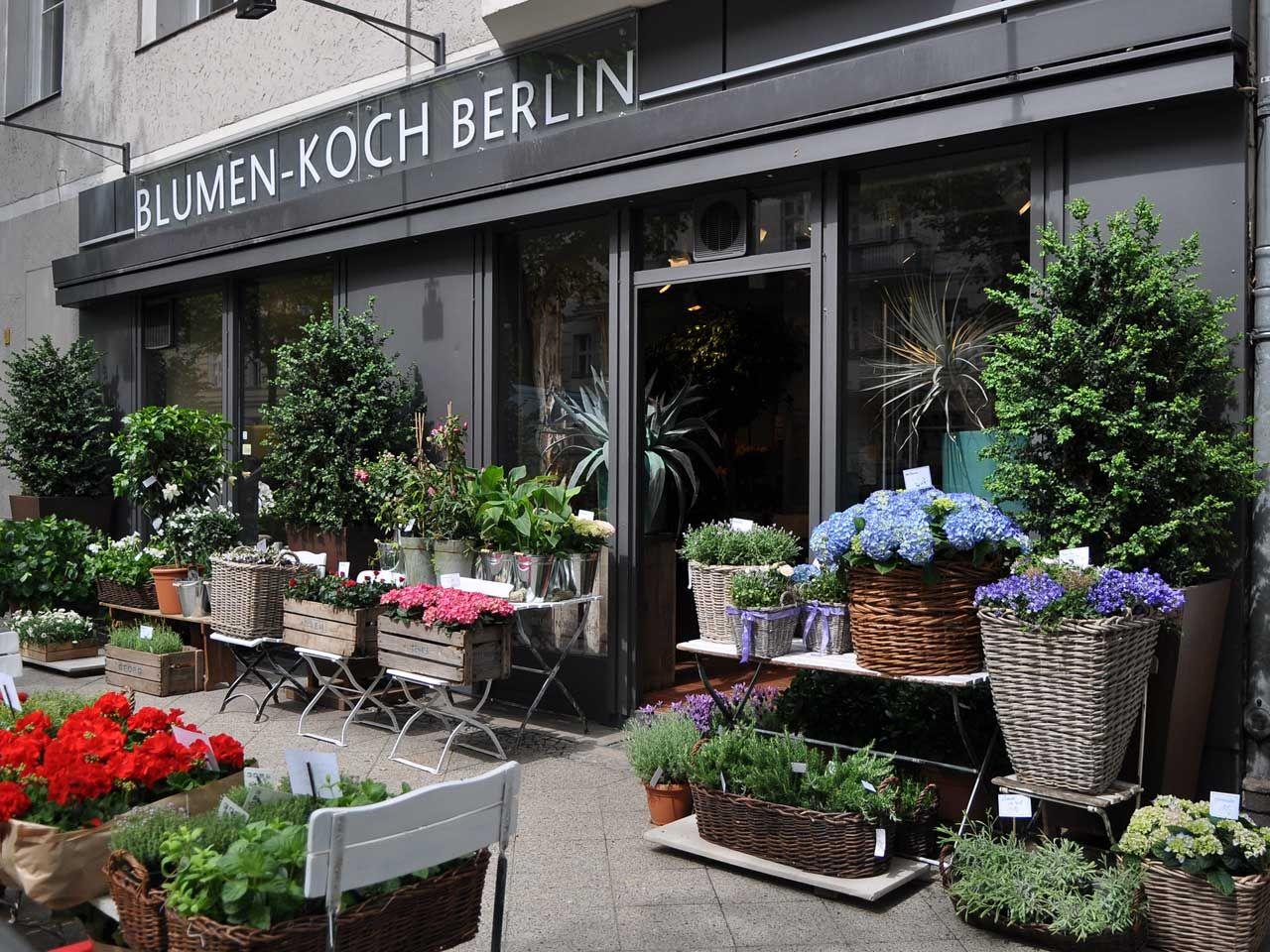 Blumen Koch Berlin Blumengeschafte Blumenladen Berlin Blumen Berlin