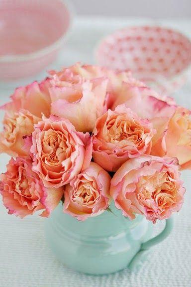 Peachy and Coral roses #rose #peachy #coral