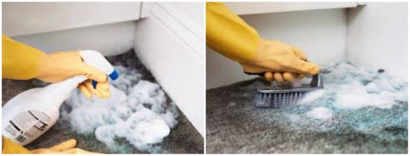 A Dehumidifier Can Remove Excess Moisture Making The Air Cooler Limiting The Growth Of Mould As Well A Carpet Repair How To Clean Carpet Restoration Services