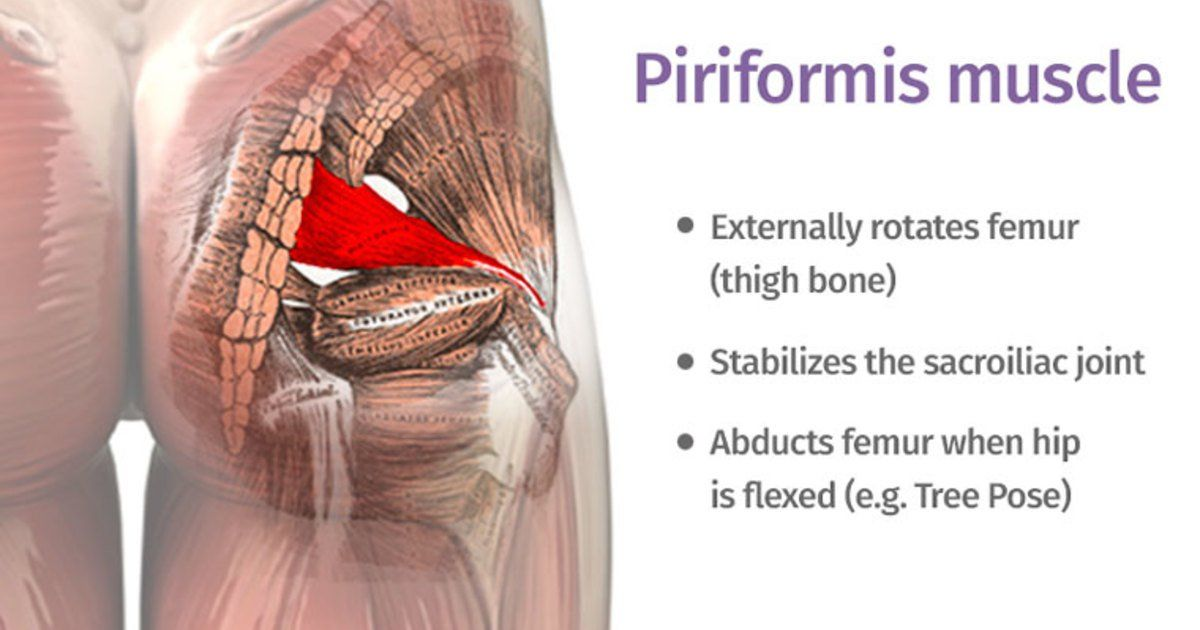 A tight piriformis is one of the major causes of sciatic pain. We ...